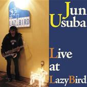 live_lazybird